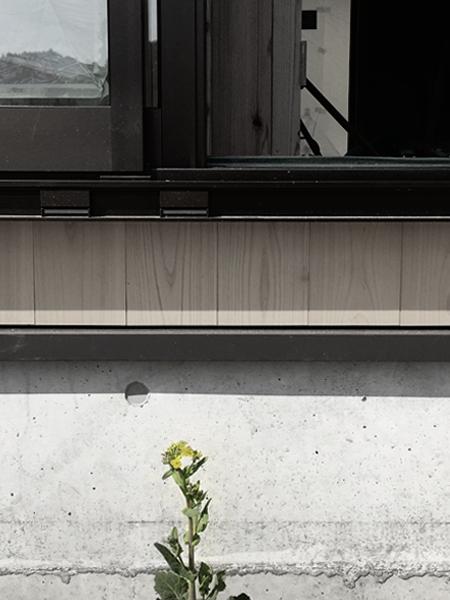 housek 菜の花 Snowdesignoffice スノーデザインオフィス 静岡 島田 藤枝 住宅設計 設計事務所